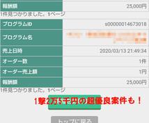 10日間で12万円稼いだお手軽な副業を教えます ~3万文字200枚の画像付きで全ての手順を徹底解説~