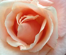 女神からのメッセージ☆オラクルカードリーディング【女性性・女子力アップ】【才能・魅力開花】