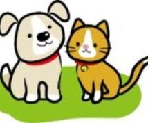 行政書士がペットに関する相談にのります さまざまなペットに関する相談に対応させて頂きます