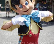 【DisneySea】写真の代行致します