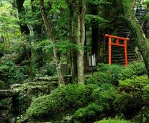 日本の神々のご神託、お伝えます 日本の神様カードを使い、あなたの悩みを神様が解決致します。