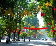 ベトナム人の私が翻訳します ネイティブな本当のベトナム語を知りたい方向けです。