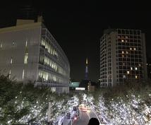 カリスマユーザーが東京のご要望のプラン作ります デートからナイトライフ、両親案内など何でもお任せください