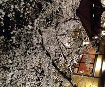 接待に使える京都(祇園)のナイトスポットを紹介します。