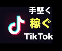 TikTokを活用して堅実に稼ぐ方法を教えます 広告収入だけじゃない、効果的な運用戦略を伝授します。