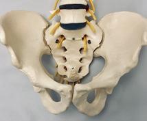 骨盤の歪み(高さ)を一人で整える方法を教えます セルフ身体矯正の方法をヨガ・武術から抽出してお伝えします