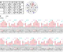 推命バイオリズム鑑定結果をお送りします 0歳~100歳までのバイオリズムを知りたい方に!