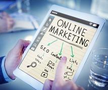 アメリカ市場へのマーケティング方法を企画提案します アメリカ市場へ向けたオンラインマーケティング