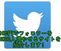 【twitter】100円でフォロワー4000人増やせるサイトを紹介します!【ツイッター】
