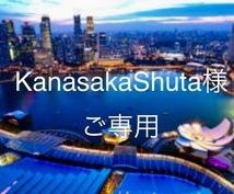 Kanasaka Shuta 様ご専用となります 外資への就活を成功に導く、レジュメの添削、完成いたします!