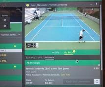 テニスで投資★という新しい楽しみ方を教えます テニスをプレーするのも、観戦するのも好きな人へ!