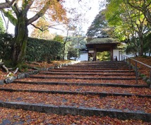 京都のおすすめ場所やお店などのご相談に応じます 京都検定2級、市内で訪れた場所は千件以上の経験からアドバイス