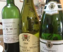 ワインなどのお酒を楽しむノウハウ、お教えいたします ワインに興味はあれど、何から学べば良いか判らぬ初心者のアナタ