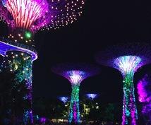 シンガポールの旅のオススメ、お教えします 女子旅応援!グルメ、観光、インスタ映えも☆