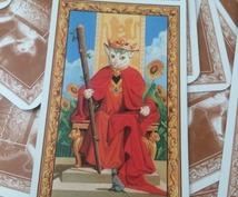 ネコタロットで占います ネコタロットで占います、かわいいカードです