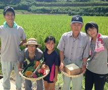 小規模レストラン・介護施設様、野菜ソムリエが栽培する味の濃い自然農法の安全な野菜の仕入先を教えます