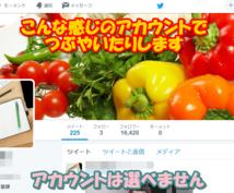 広告SEO☆あなたの媒体を3メディアで拡散します Twitter、Facebook、インスタグラムなどで拡散!