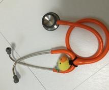 実習のアドバイスをします 実習や勉強が大変な看護学生さんへ!実習のお悩み解決します!