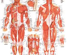 健康をお手伝いします 筋トレ、ダイエット運動に関する悩みのエトセトラ