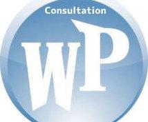 WordPressのご相談をお受けします 調査・ご相談ののち説明・アドバイスをします