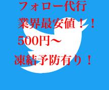 ツイッターのフォローを代行します Twitterの自発フォローが大変だなと思った方にオススメ!