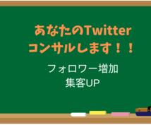Twitter(ツイッター)を1週間コンサルします 【反応増加】フォロワーUP・SNS集客したい人