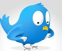 Twitterフォロワーを無制限に増やすノウハウ教えます!!