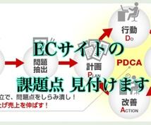 プロのECコンサルが課題発見と施策提案をします 【ECサイト】ショップの課題点を把握したいかたにオススメ!