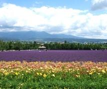 北の国から富良野市の正確な現在気温を調べます。