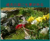 ガーデニング、小さな庭づくり最初の一歩を助言します 建売の小さな空間に大自然を呼び込む手立てについて