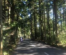 箱根の魅力を伝えます 箱根での見どころ。景色、温泉の種類 交通規制情報