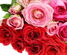 今のあなたに必要な女神様のメッセージをお届けします 人生や恋愛に行き詰まりを感じているあなたにお勧め!