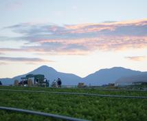 【経験者が答えます!】農家になりたい人、就農、農業への転職、相談にのります!