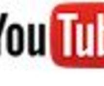 Youtube広告の運用代行をいたします 正規代理店だからしっかり成果を残します