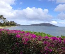 ハワイウエディング&トラベルの相談にのります。