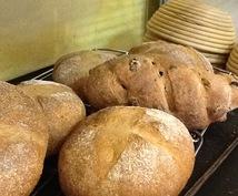天然酵母パンの分からないにお答えします 自家製小麦でパン屋15年。微妙なコツをアドバイス。