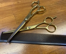 現役美容師があなたに合う美容室探します 今の美容室、美容師さんに満足していますか?