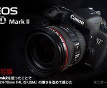 Shinnoのおすすめカメラ選び♪