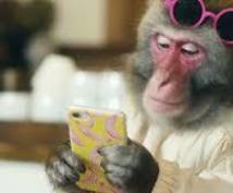 サルでもできるマニュアル付き☆初心者大歓迎します ネットビジネスでつまづいてる方や初心者向け