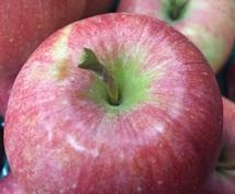 農家が教える美味しいりんごの見分け方、教えます ★美味しいりんごが食べたいのに、間違った選び方してませんか?