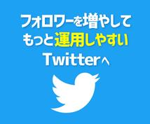 Twitterのフォロワーを1週間で増やします 【フォロワー2.7万人実績】SNSを広告媒体にしたいあなたへ