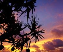 失敗しない沖縄の旅をコーディネートいたします 初沖縄旅行からリピーター向けディープな旅までをサポート。