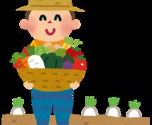 農業経営の相談にのります 農協ではない金融機関経験者による農業経営の見方(味方)