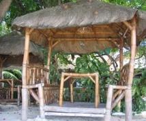 フィリピン留学について何でもお答えします 格安留学に興味のある方、計画してる方にオススメ!
