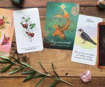 高次からのメッセージカードを5枚引きます 【期間限定価格】タロットとオラクルのリーディング、美麗画像付
