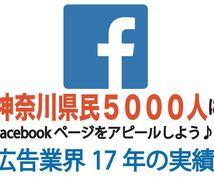 あなたのFacebookページをご紹介します 神奈川県民5000人FBアカウントよりあなたのFBページ招待