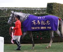 2017 有馬記念 一押し馬を教えます 2017有馬記念はこの馬で決まりです。