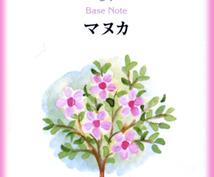 精油に宿るスピリットからのメッセージをお届けします スピリチュアルアロマ☆植物界からのメッセージ