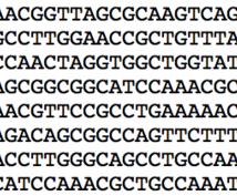 DNA・アミノ酸配列から特定の配列をお探しします かゆい所に手が届く便利なサービスです!