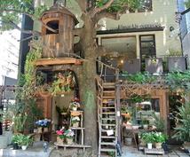 7年食べ歩いた六本木ランチブロガーがママ会、女子会向けのランチのお店を紹介します。